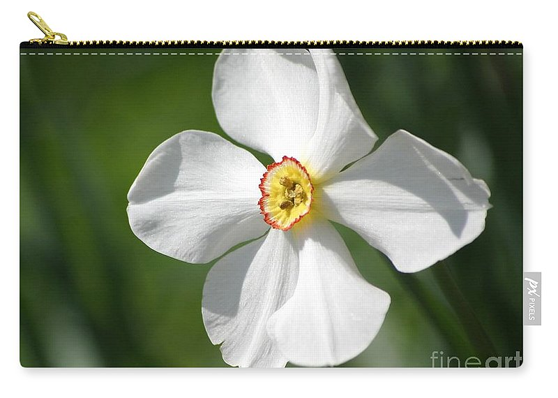 Flowers Carry-all Pouch featuring the photograph Put On A Happy Face by Living Color Photography Lorraine Lynch