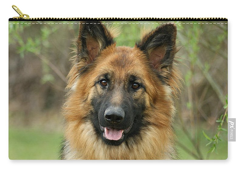 German Shepherd Carry-all Pouch featuring the photograph Queena by Sandy Keeton