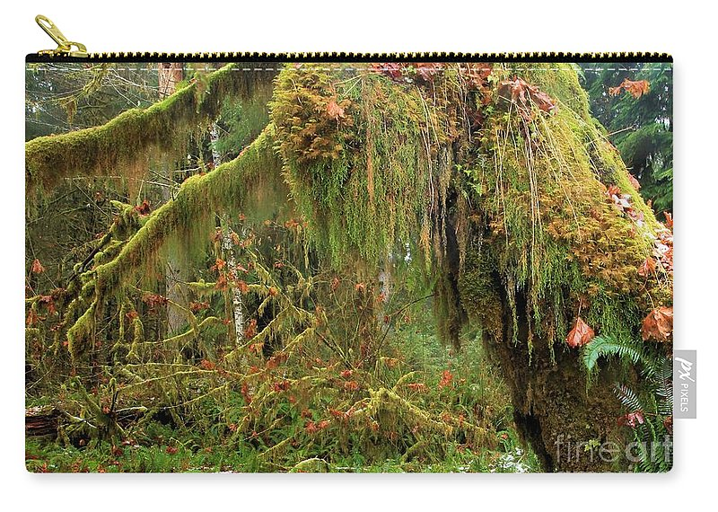 Hoh Rainforest Carry-all Pouch featuring the photograph Rain Forest Crocodile by Adam Jewell