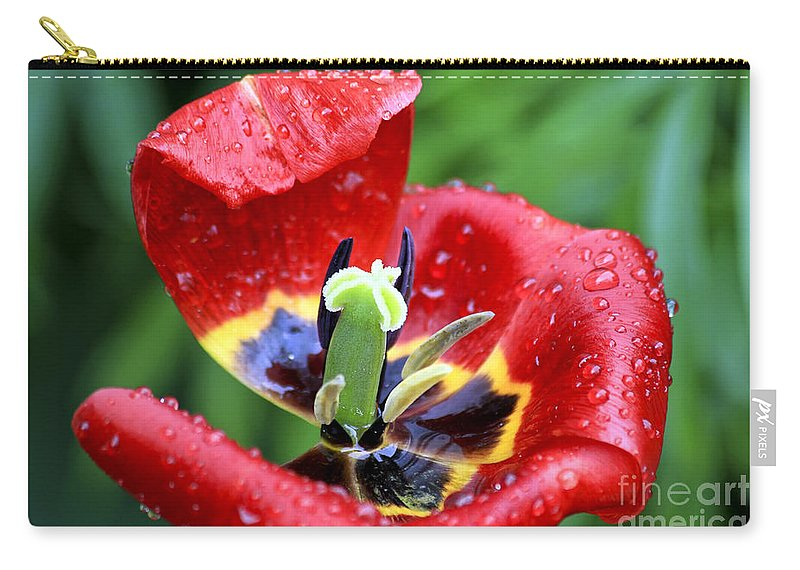 Flower Carry-all Pouch featuring the photograph Rain Kissed by Teresa Zieba