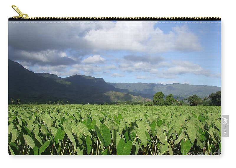 Hanalei Carry-all Pouch featuring the photograph Rain Over A Hanalei Taro Field by Mary Deal