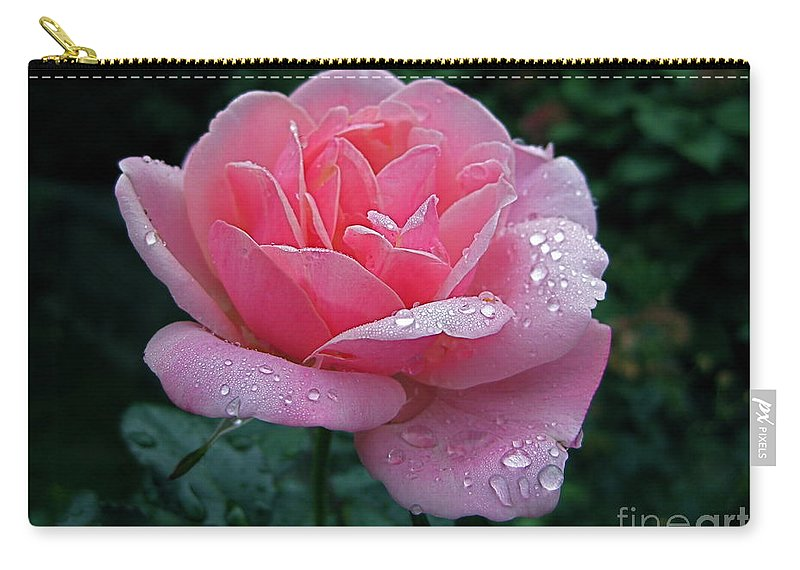 Rose Carry-all Pouch featuring the photograph Rain Sprinkled Rose by Byron Varvarigos