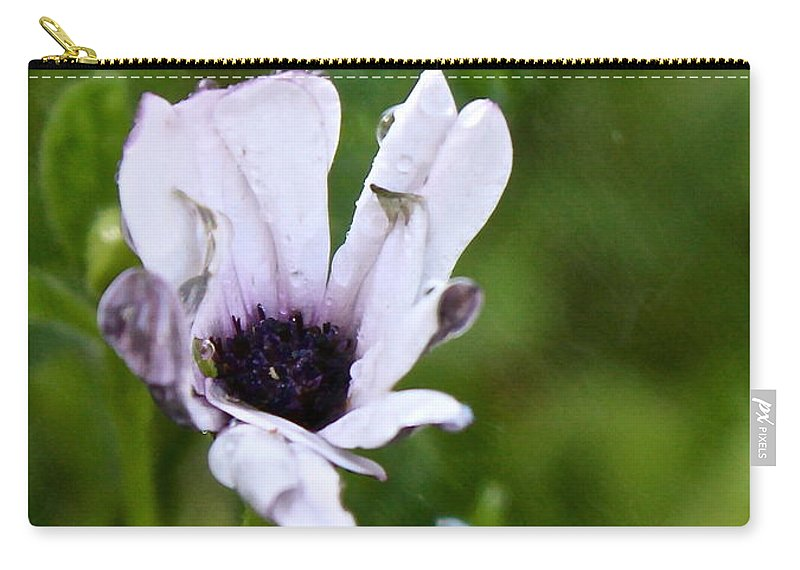 Rain Carry-all Pouch featuring the photograph Rain With Breeze by Kume Bryant