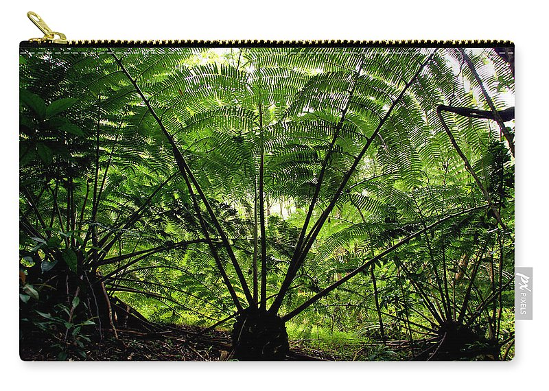 Manoa Carry-all Pouch featuring the photograph Rainforest Backlight by Kevin Smith