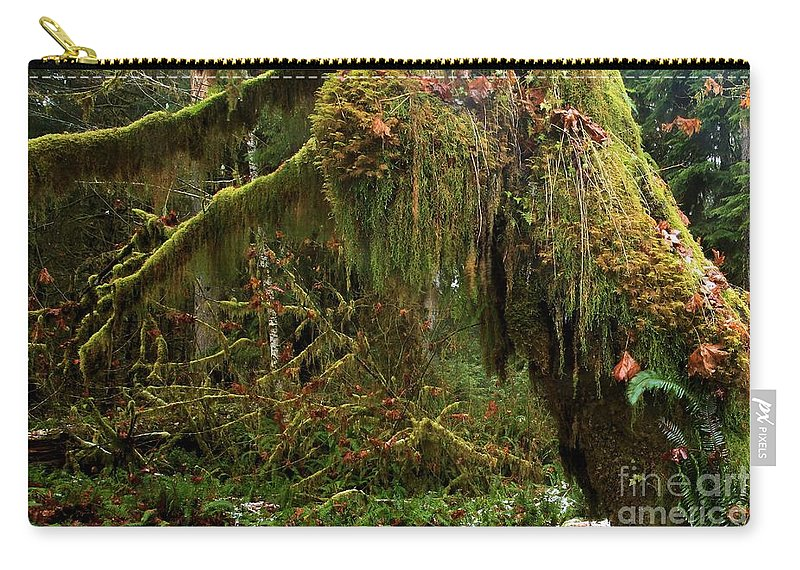 Hoh Rainforest Carry-all Pouch featuring the photograph Rainforest Jaws by Adam Jewell