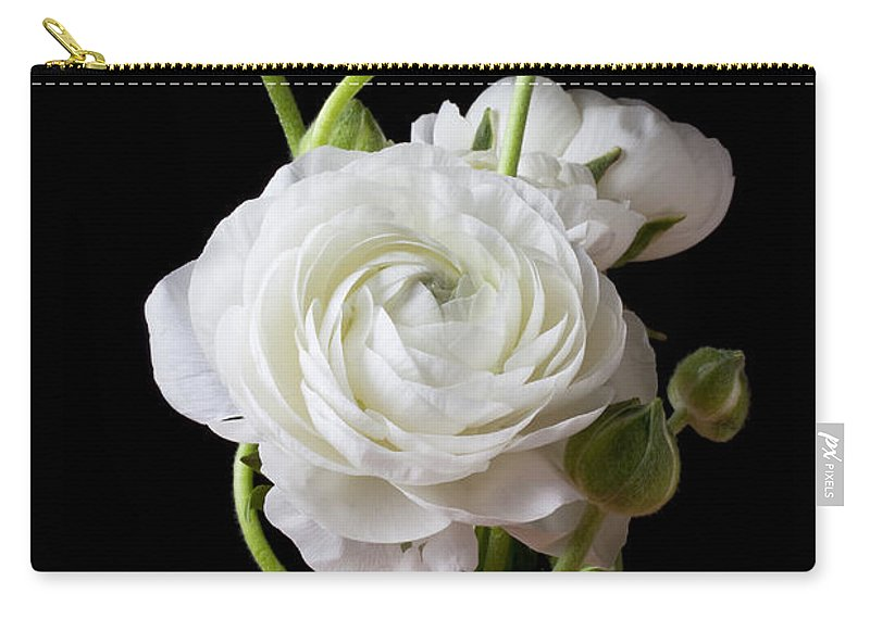 White Ranunculus Flower Red Carry-all Pouch featuring the photograph Ranunculus In Red Vase by Garry Gay