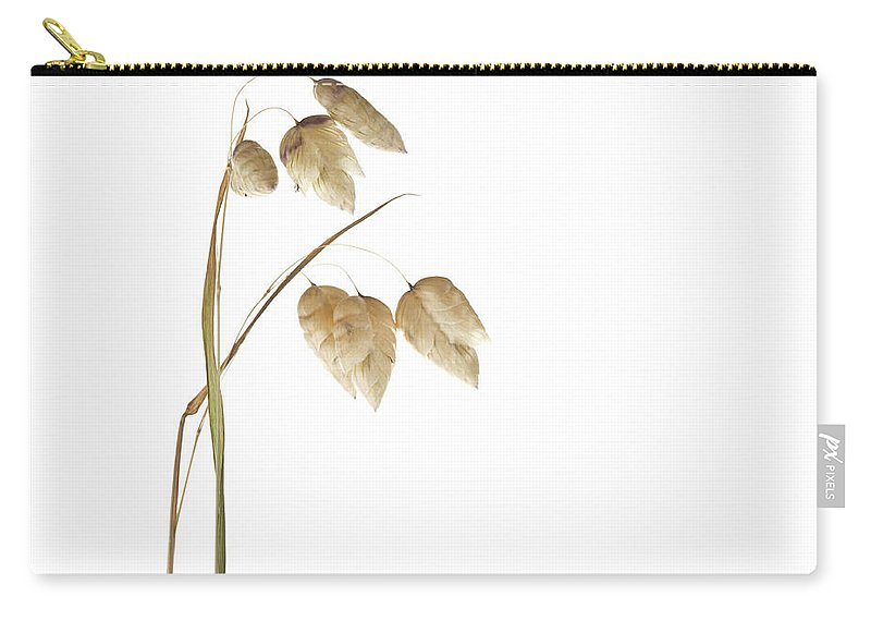 Rattlesnake Carry-all Pouch featuring the photograph Rattlesnake Grass Number 2 by Carol Leigh