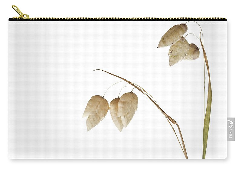 Rattlesnake Carry-all Pouch featuring the photograph Rattlesnake Grass Number 3 by Carol Leigh