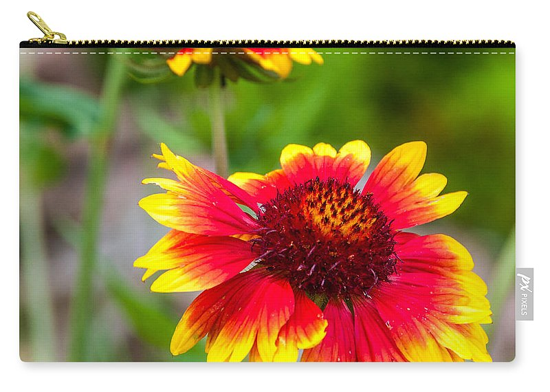 Flowers Carry-all Pouch featuring the photograph Reaching by Guy Whiteley