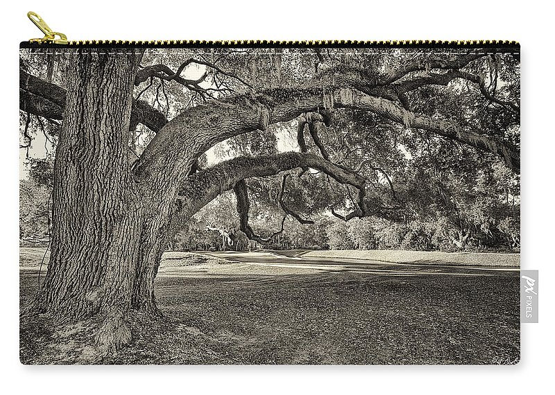 Beaufort County Carry-all Pouch featuring the photograph Reaching Out by Phill Doherty