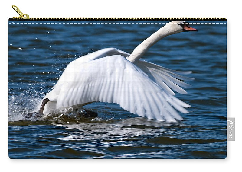 Swan Carry-all Pouch featuring the photograph Ready Set Go by Randall Branham