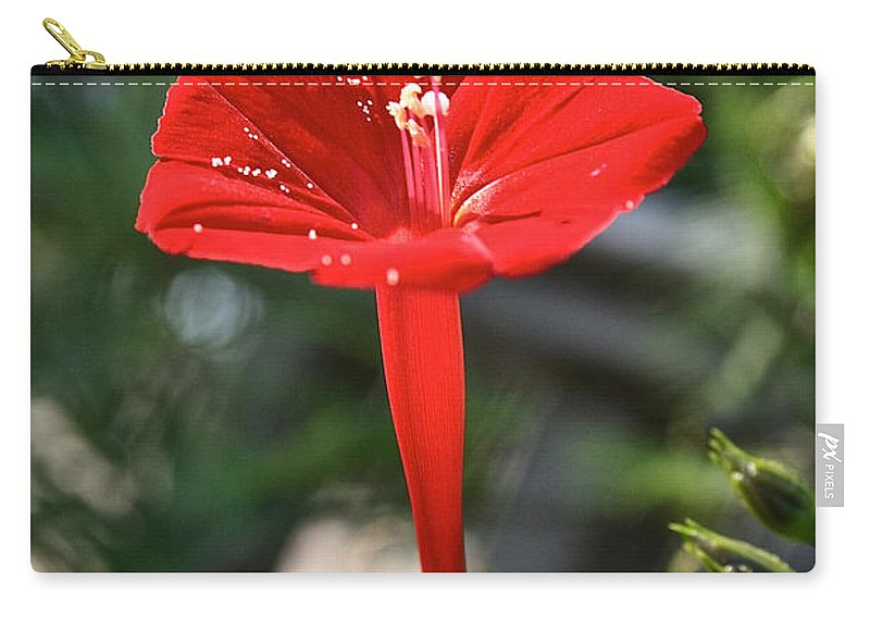 Outdoors Carry-all Pouch featuring the photograph Real Red by Susan Herber