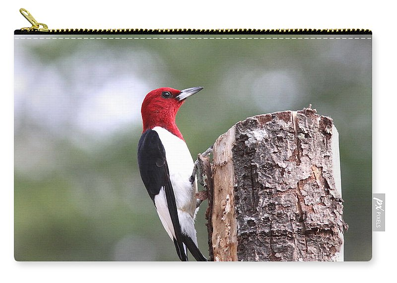 Carry-all Pouch featuring the photograph Really Red by Travis Truelove