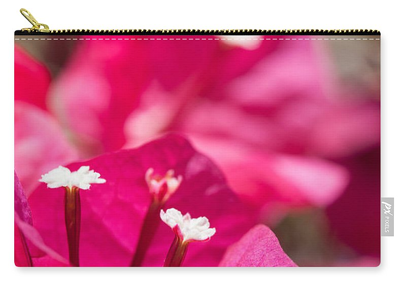 Ralf Carry-all Pouch featuring the photograph red Bougainvillea by Ralf Kaiser