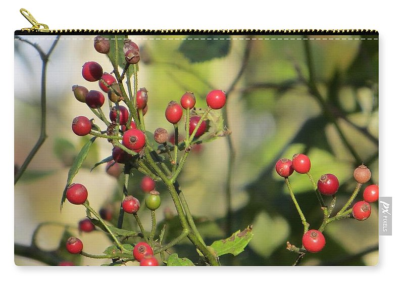 Ruby In Green Carry-all Pouch featuring the photograph Red Dots by Sonali Gangane