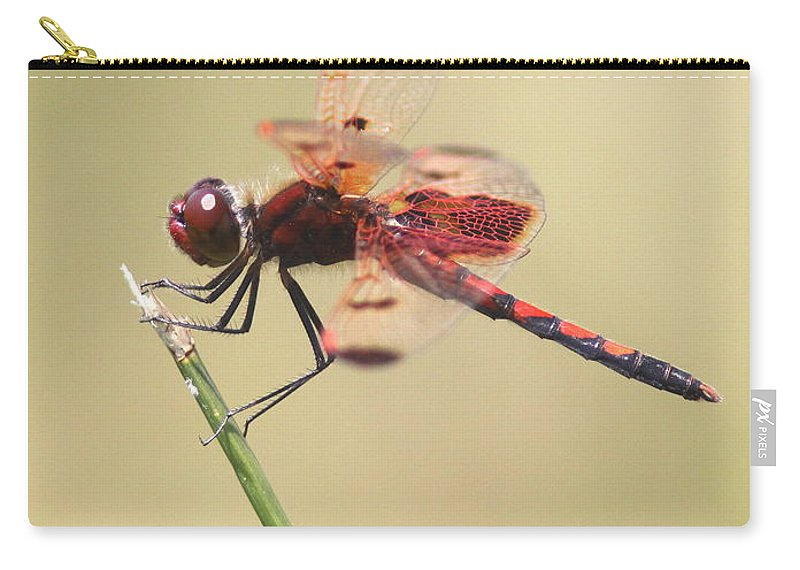 Red Carry-all Pouch featuring the photograph Red Dragon by Travis Truelove