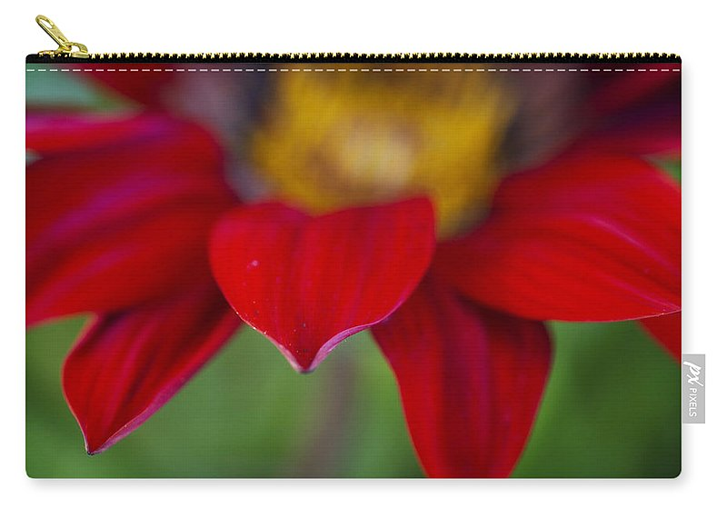 Red Carry-all Pouch featuring the photograph Red Gerber 3 by Jessica Velasco