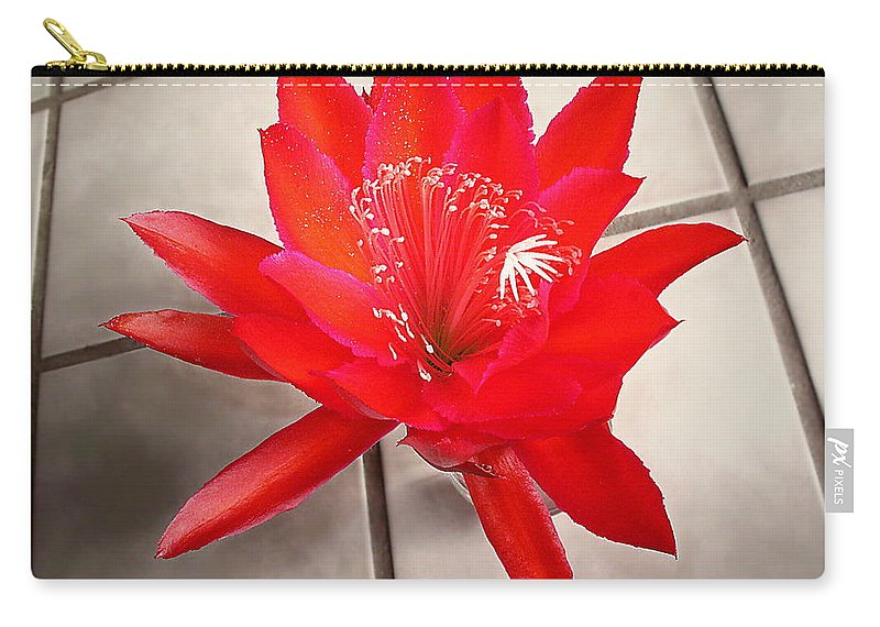 Red Carry-all Pouch featuring the photograph RED by Joyce Dickens