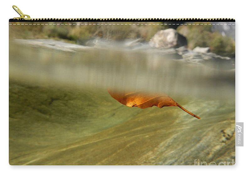 Red Leaf Carry-all Pouch featuring the photograph Red Leaf Floating by Mats Silvan