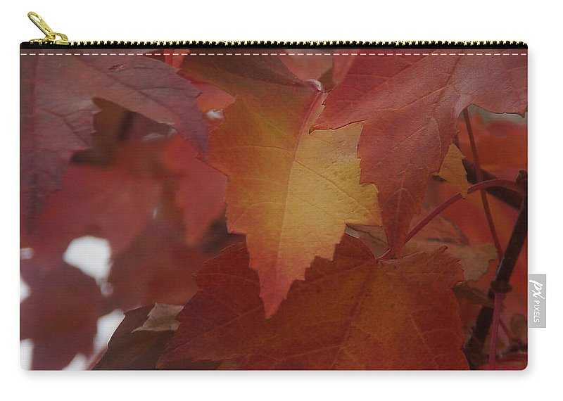 Red Carry-all Pouch featuring the photograph Red Maple With A Splash Of Gold by Mick Anderson