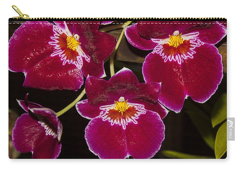 Red Orchids Carry-all Pouch featuring the photograph Red Orchids by Garry Gay