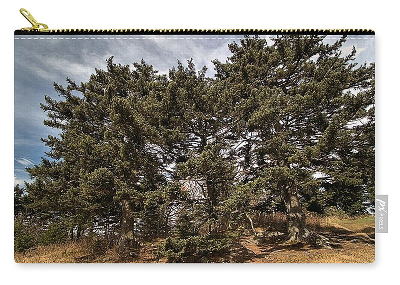 Carry-all Pouch featuring the photograph Red Spruce On Whitetop Mountain by Mel Hensley