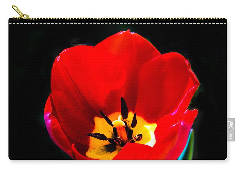 Plants Carry-all Pouch featuring the photograph Red Tulip by Robert Bales