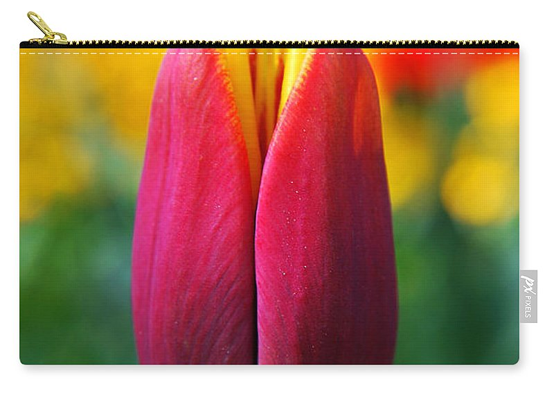 Yhun Suarez Carry-all Pouch featuring the photograph Red Tulip by Yhun Suarez