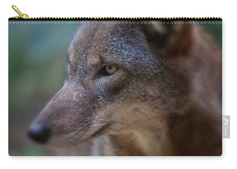 Wolf Carry-all Pouch featuring the photograph Red Wolf Stare by Karol Livote