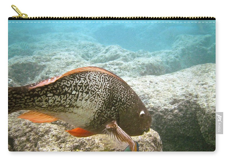 Uhu Palukaluka Carry-all Pouch featuring the photograph Redlip Parrotfish by Michael Peychich