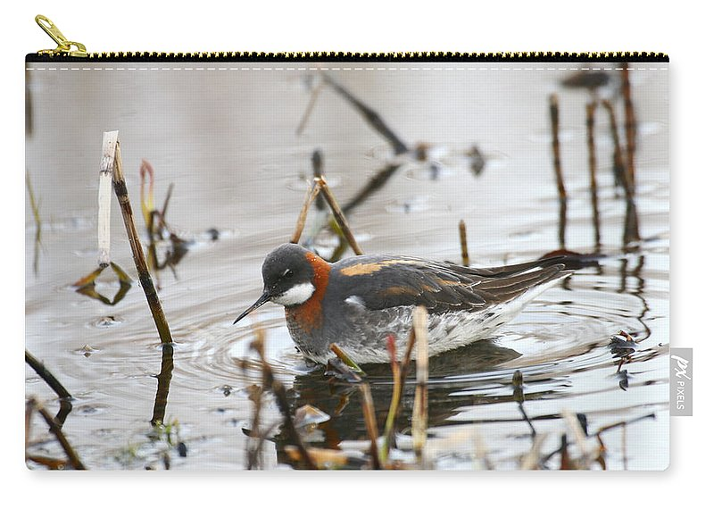 Alaska Carry-all Pouch featuring the photograph Rednecked Phalarope by Doug Lloyd