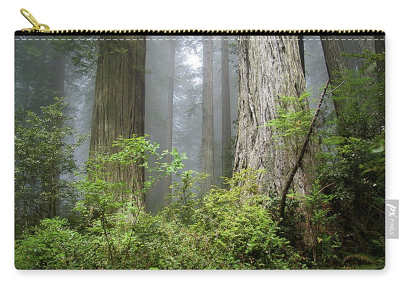 Redwoods Carry-all Pouch featuring the photograph Redwoods In May by Greg Nyquist