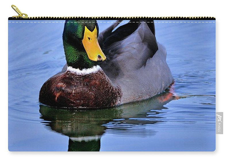 Reflection Carry-all Pouch featuring the photograph Reflecting Mallard by Bill Dodsworth