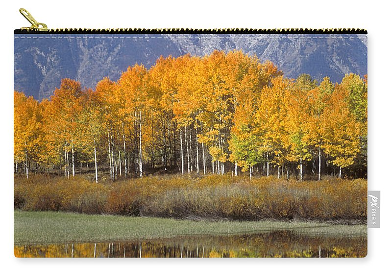 Bronstein Carry-all Pouch featuring the photograph Reflection At Oxbow Bend by Sandra Bronstein