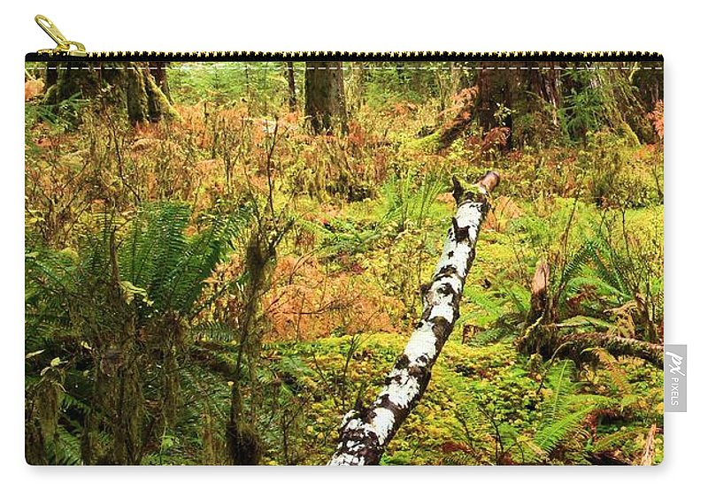 Hoh Rainforest Carry-all Pouch featuring the photograph Regeneration by Adam Jewell