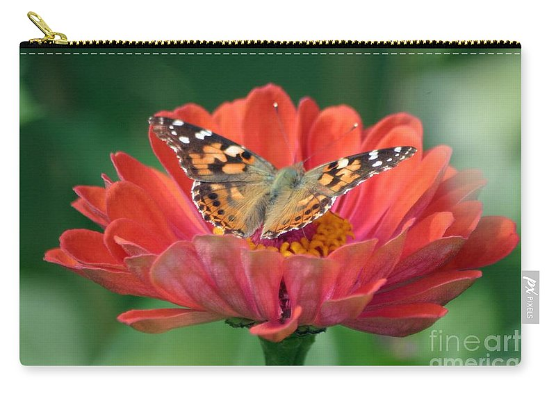 Butterfly Carry-all Pouch featuring the photograph Resting Area by Living Color Photography Lorraine Lynch