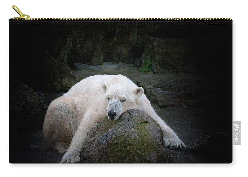 Polar Bear Carry-all Pouch featuring the photograph Resting Polar by Karol Livote