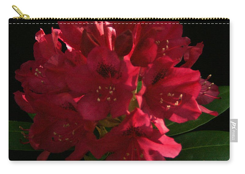 Rhododendron Carry-all Pouch featuring the photograph Rhododendron At Sunset 1 by Douglas Barnett
