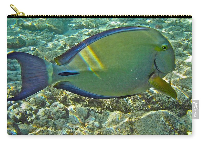Acanthurus Carry-all Pouch featuring the photograph Ringtail Surgeonfish by Michael Peychich