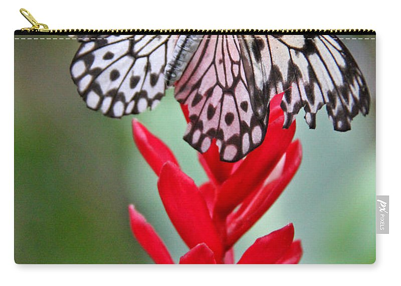 Butterfly Carry-all Pouch featuring the photograph Rise To The Top by Scott Mahon