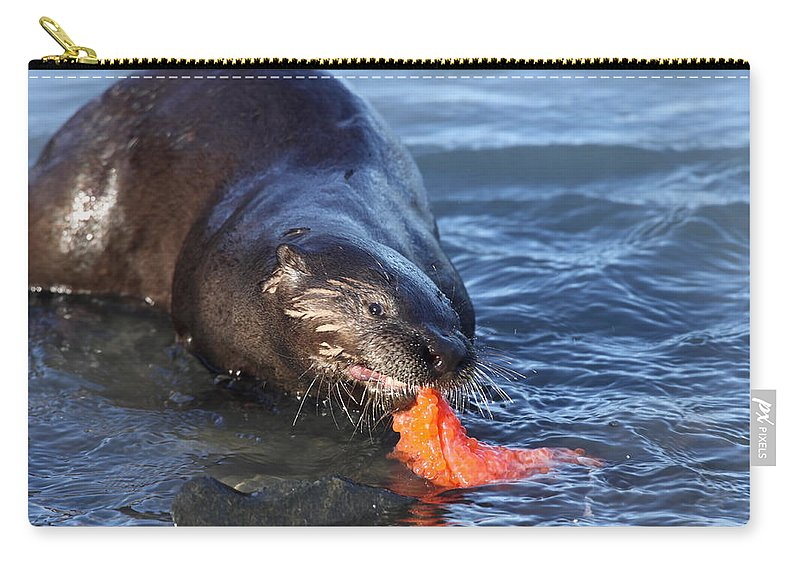 Doug Lloyd Carry-all Pouch featuring the photograph River Otter by Doug Lloyd