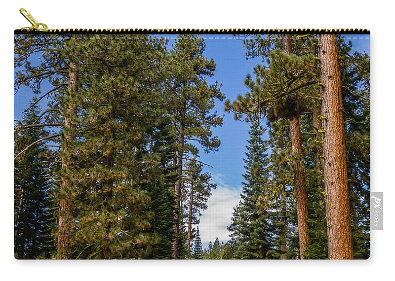 Lassen Volcanic National Park Carry-all Pouch featuring the photograph Road Through Lassen Forest by Greg Nyquist