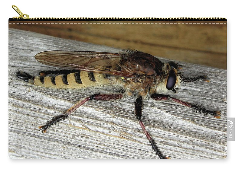 These Insects Look Scary Carry-all Pouch featuring the photograph Robber Fly by Kristin Elmquist