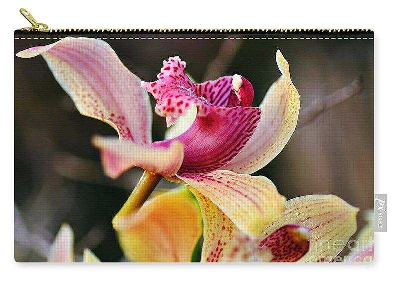 Photography Carry-all Pouch featuring the photograph Rocking Chair Orchid by Kaye Menner