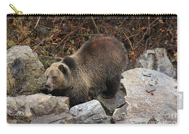 Grizzly Bear Carry-all Pouch featuring the photograph Rocky by Adam Jewell