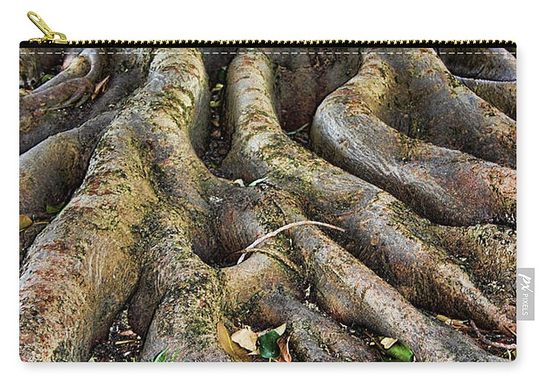 Tree Carry-all Pouch featuring the photograph Roots Of Glory by Mariola Bitner