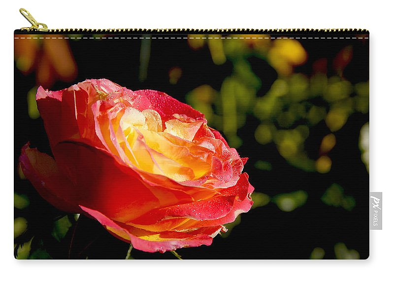Rose Carry-all Pouch featuring the photograph Rose After A Rain Shower by Mick Anderson