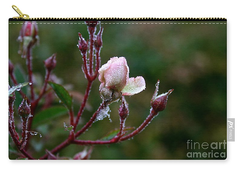 Flower Carry-all Pouch featuring the photograph Rose Candelabra by Susan Herber