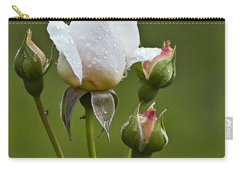 Rose Carry-all Pouch featuring the photograph Rose Flower Series 6 by Heiko Koehrer-Wagner