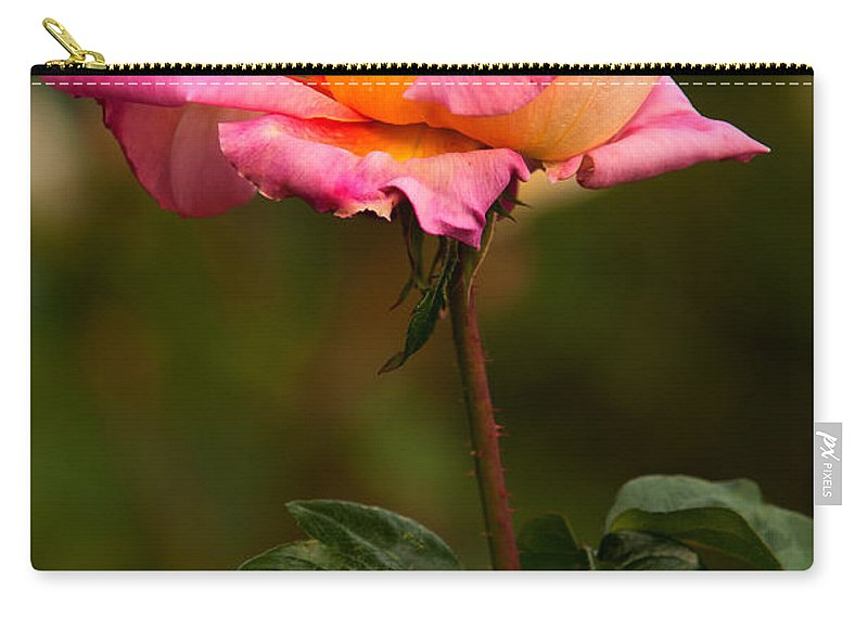 Rose Carry-all Pouch featuring the photograph Rose by Paul Mangold